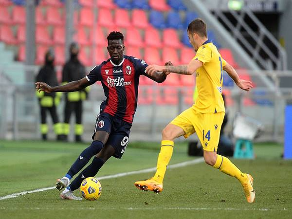 Nhận định bóng đá Hellas Verona vs Bologna, 1h45 ngày 18/5